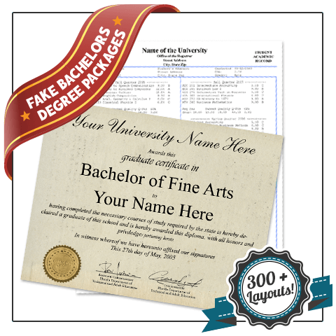 Diploma in bachelors of fine arts degree with shiny gold embossed seal along with matching undergraduate academic transcripts